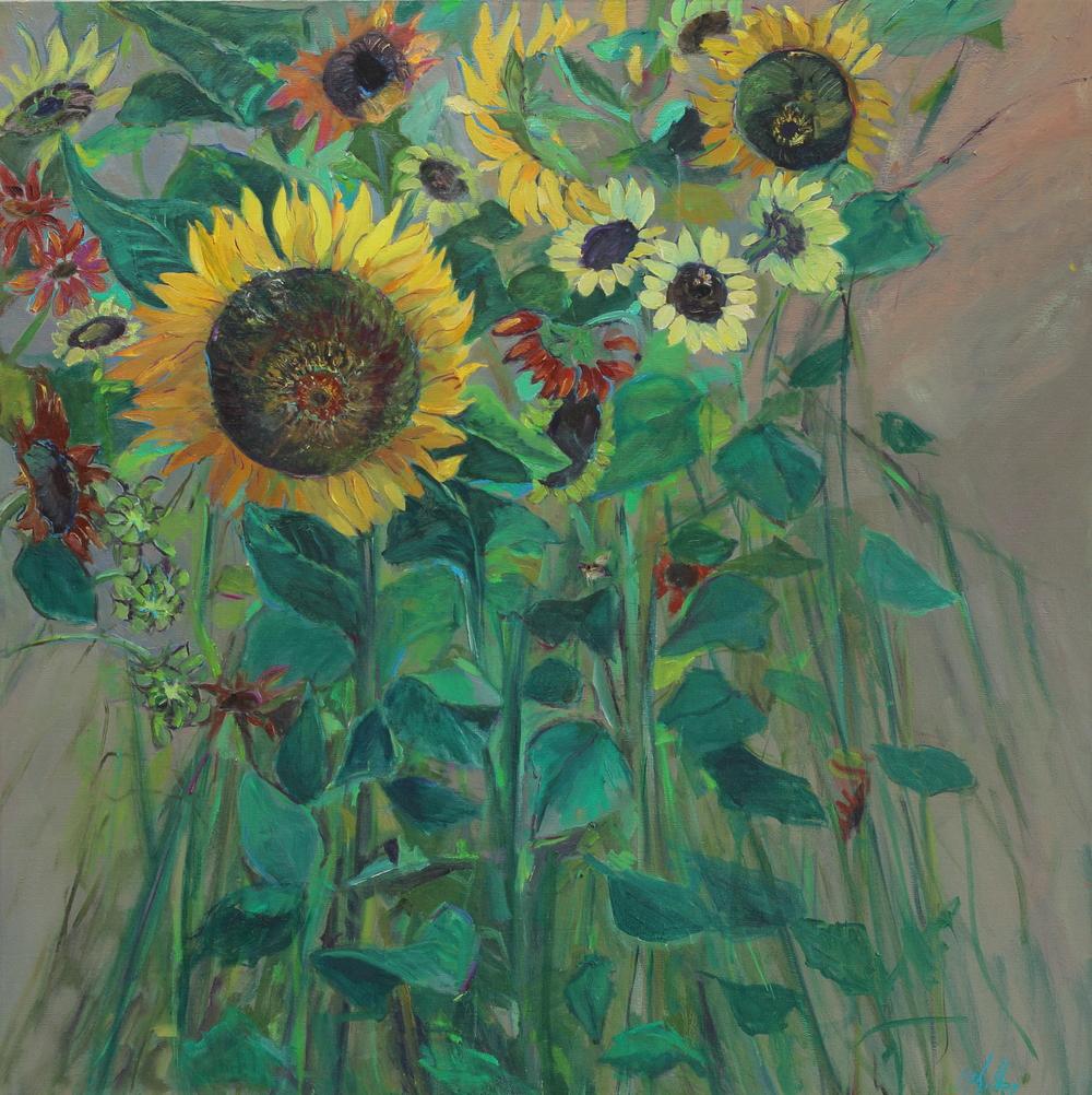 sunflower jungle.JPG