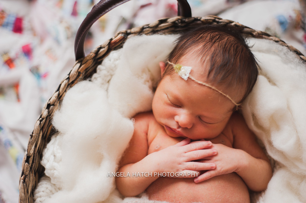 Utah Newborn Photographer | Angela Hatch Photography