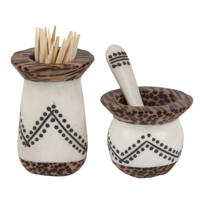 Coco Wood and Bone Toothpick & Spice set