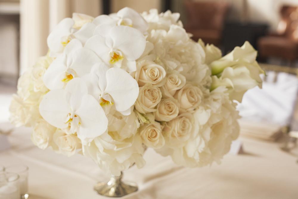 Florals_33.jpg