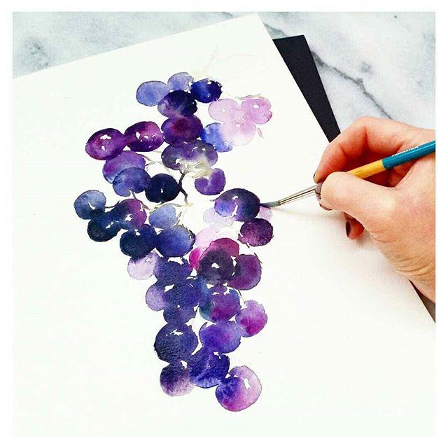 Watercolour Grapes Purple Violet