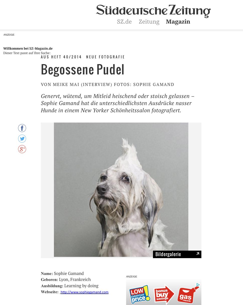 WD-suddeutsche.jpg