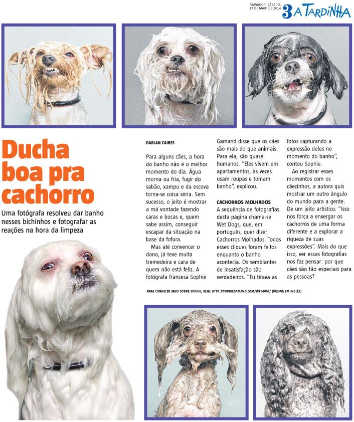 brazil_newspaper.jpg
