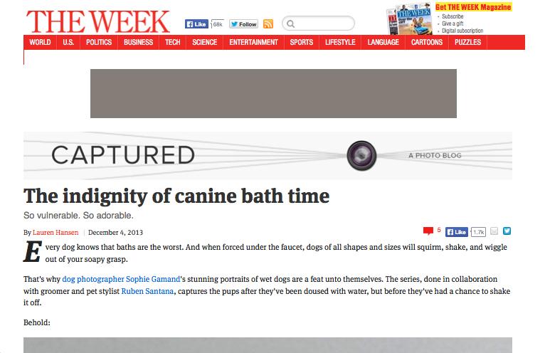 theweek.jpg