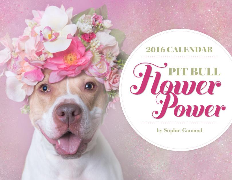 WORLDWIDE - FLOWER POWER CALENDAR, 2016 Order here, $21.