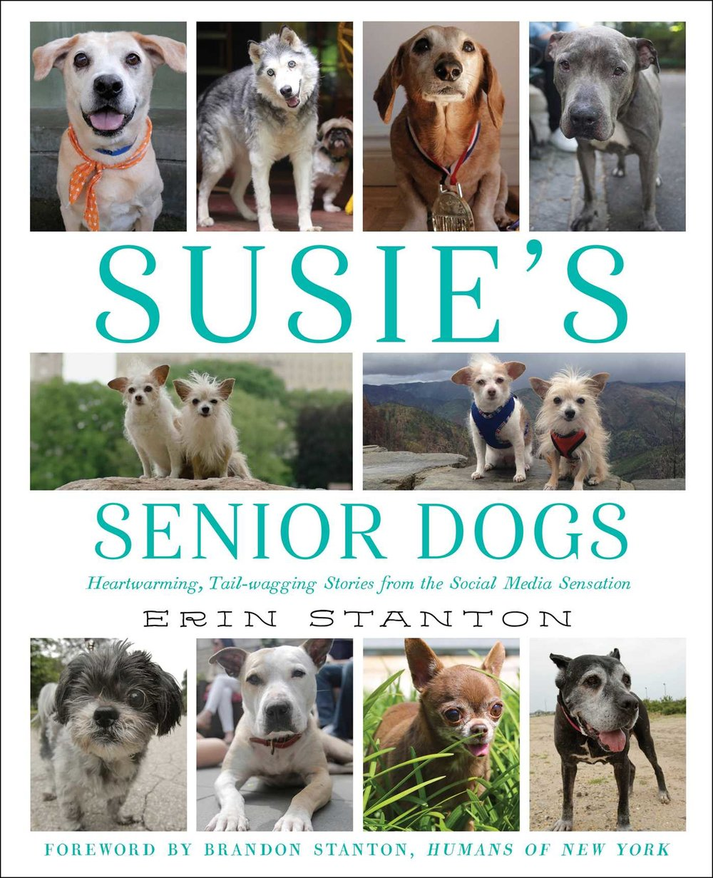 Susie's Senior Dogs is a heartwarming book about senior dog rescues, written by my dear friend Erin Stanton. Available in your local book store, or online!  Get it on Amazon here .