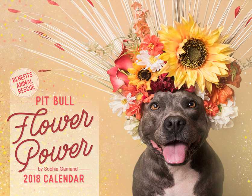 ADULT EDITION2018 Pit Bull Flower Power calendar - Ships worldwide