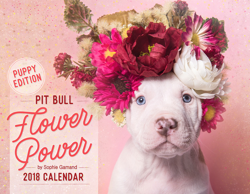 PUPPY EDITION 2018 Pit Bull Flower Power calendar - Ships worldwide