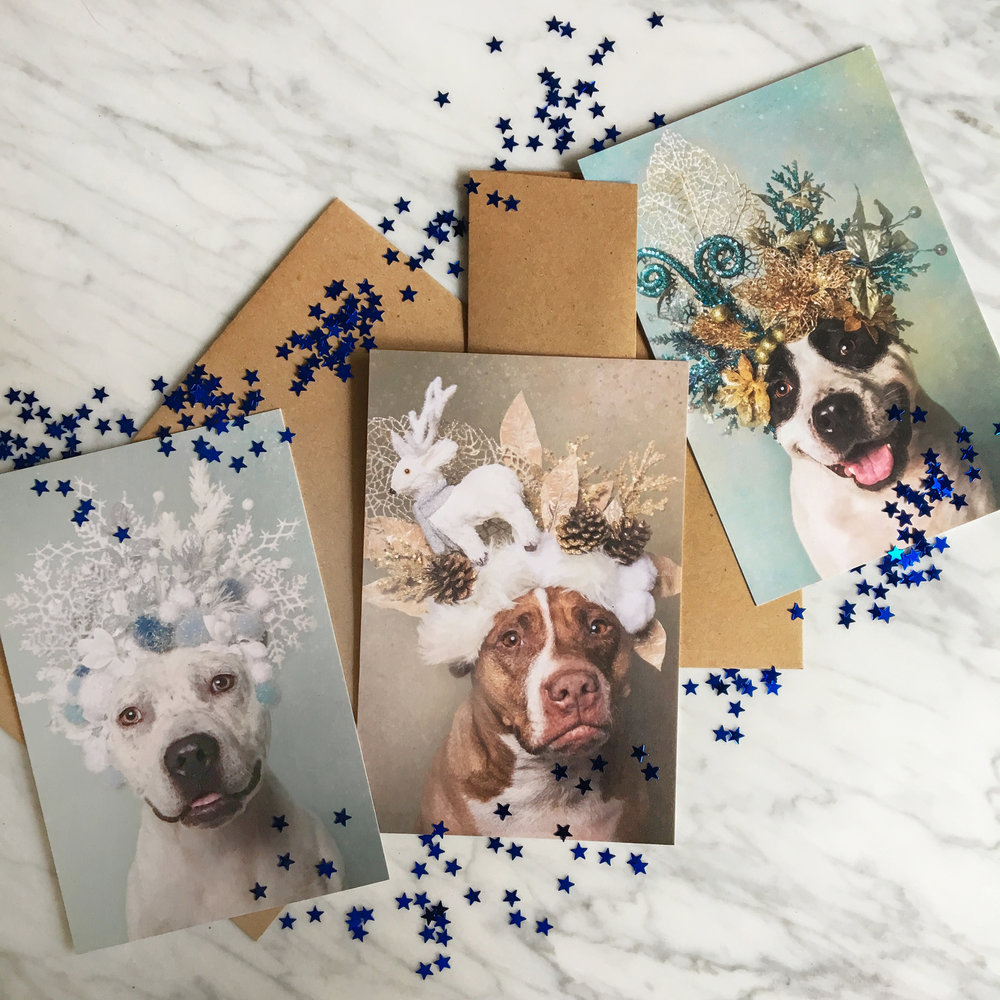 Greeting cards and postcards - High quality. Greeting cards include Kraft envelope.Ship worldwide.