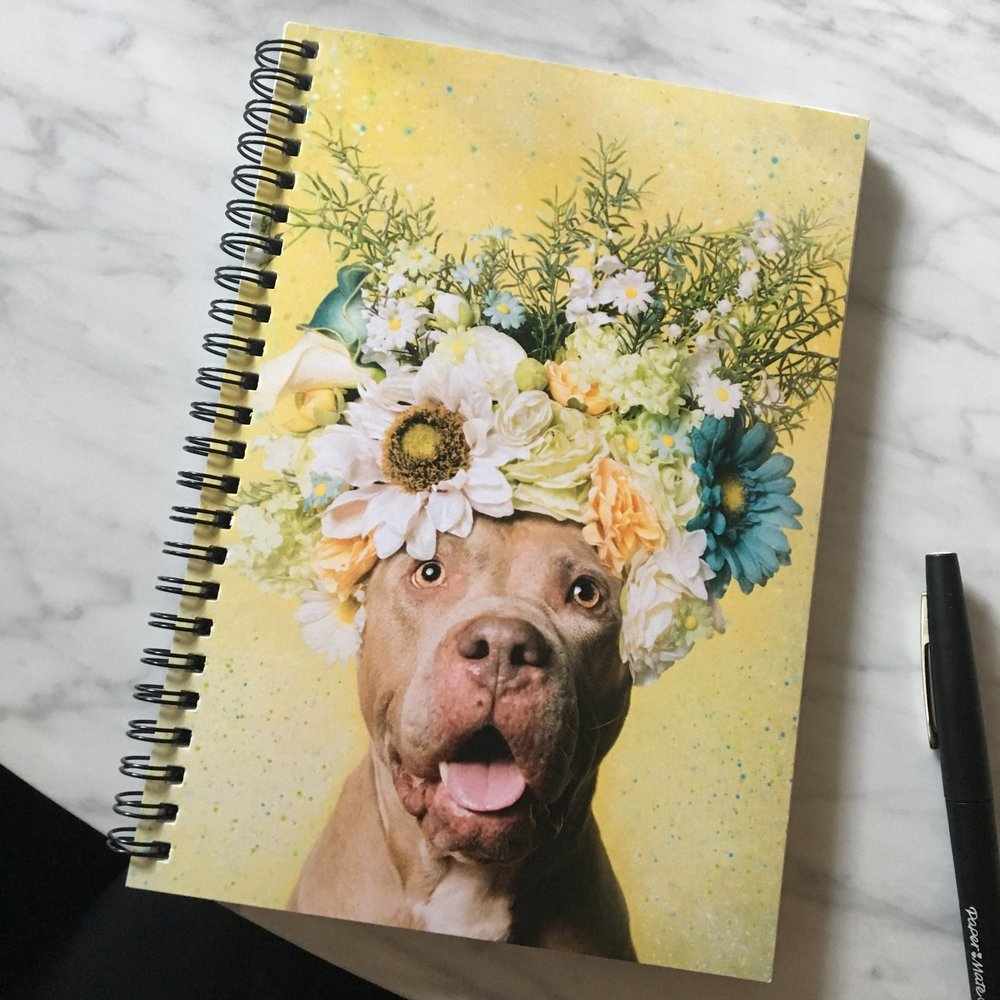 SPIRAL NOTEBOOKS  (I personally use these everyday!). Choose ruled lines or graph. 6x8in. 120 pages. Cover 350gsm, paper stock 90gsm. Choose ruled or graph pages. Handy document pocket inside the back cover.
