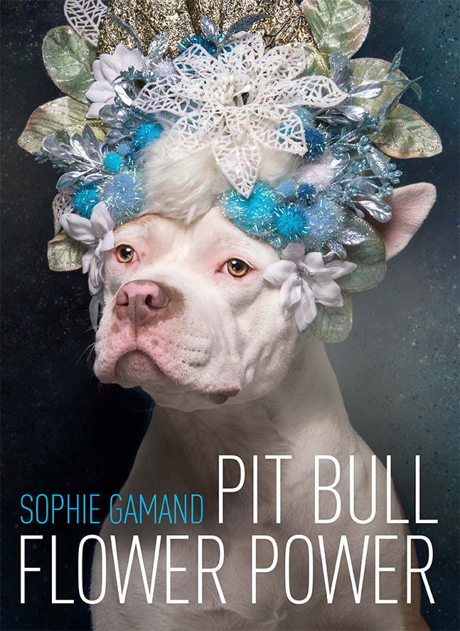 Pit Bull Flower Power    by Sophie Gamand    Lantern Books    9 x 12 in - 252 pages, full color, Hardcover ISBN: 978-1-59056-582-7