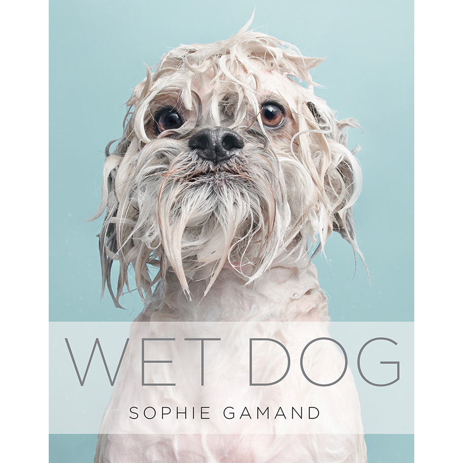 WET DOG BOOK   (2015). 144 pages of adorable, miserable soggy doggies, most of them never seen before!  Click here for more info!