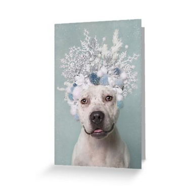 GREETING CARDS / POSTCARDS . Ships worldwide.