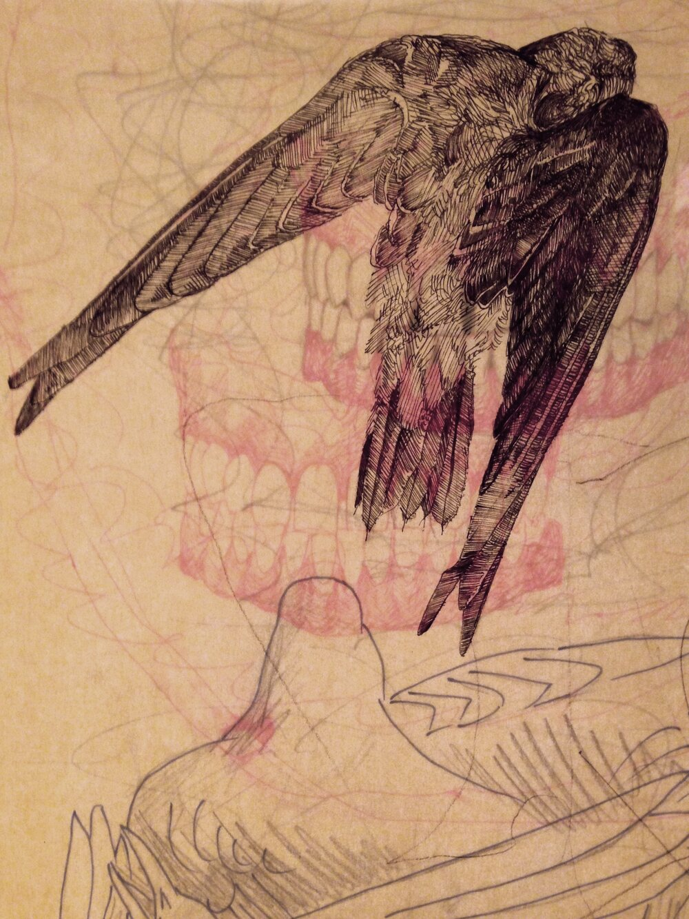 Katherine Rutecki,  Torso,  ink, graphite on tracing paper, glass plate, 30x93cm, 2015 (detail)