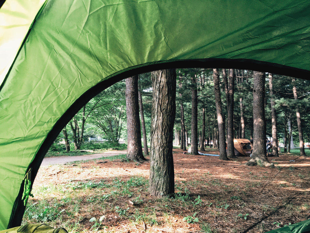 Camping like the Koreans do: just put up your tent by day and leave before it gets dark.