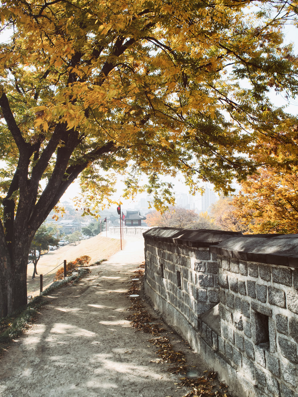 Fall at the fortress, November 2016.