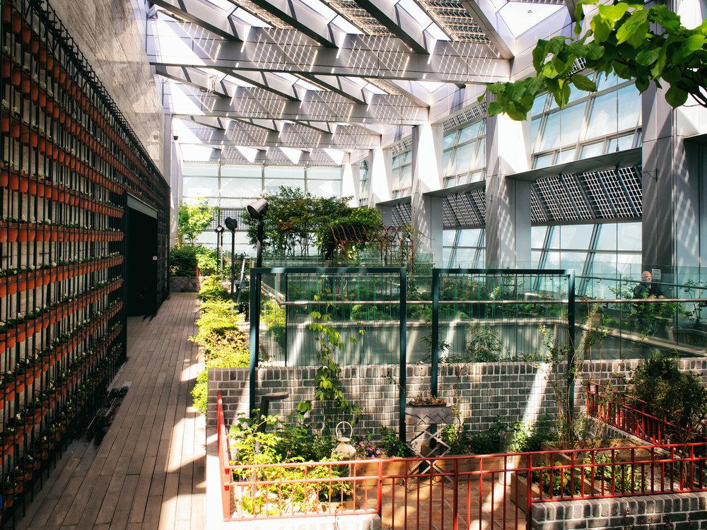 The garden on the 51st floor.