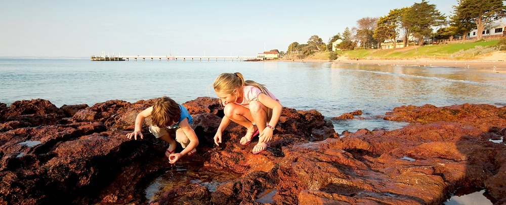 Bring the Family to Phillip Island to our Family Picnic Day
