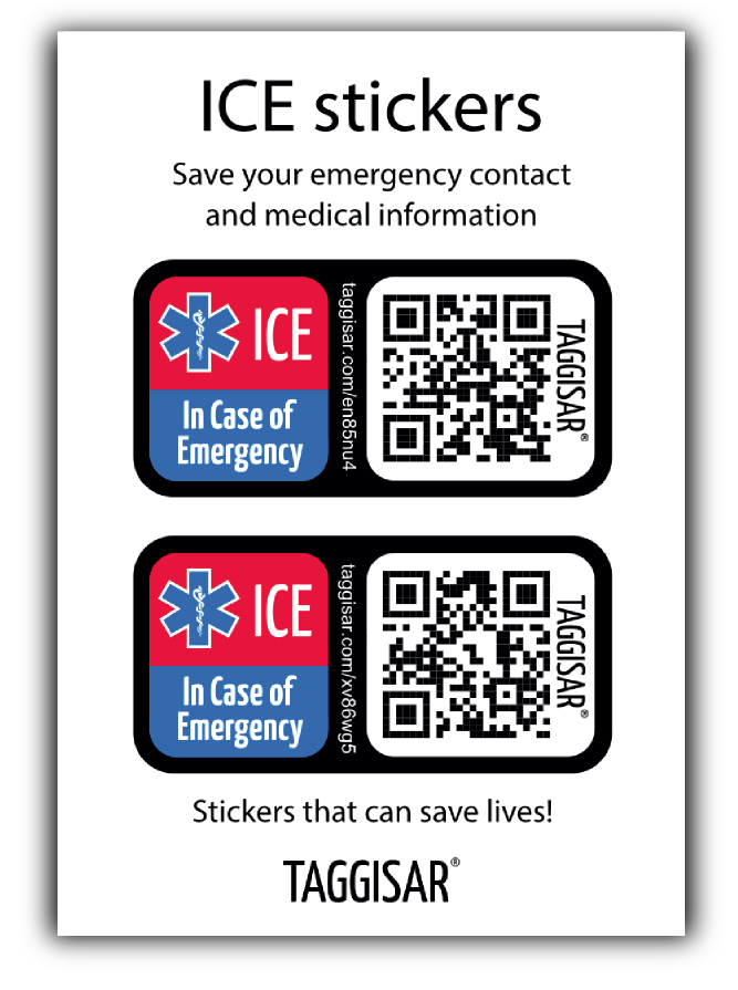 taggisar ICE Sticker 1