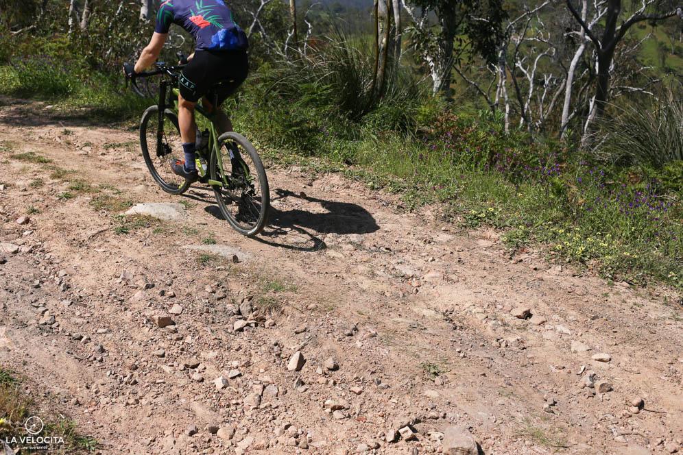 The Slate loves rough terrain.Photo Lana Adams /@lanaadams