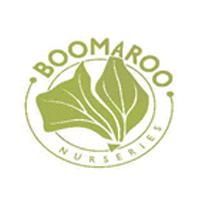 Boomaroo.png