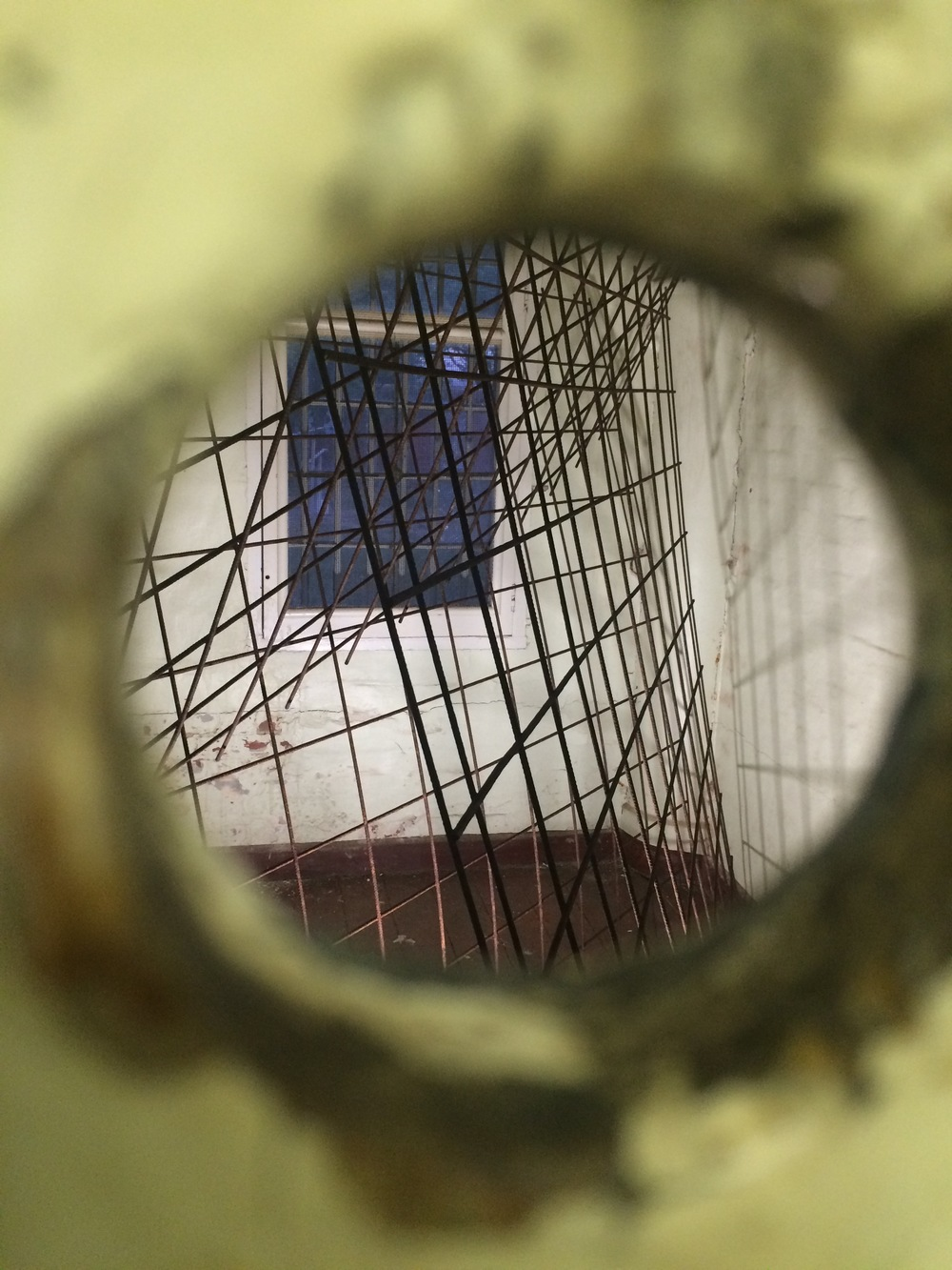 Jane Skeer   Trapped   2015  weldmesh through peephole
