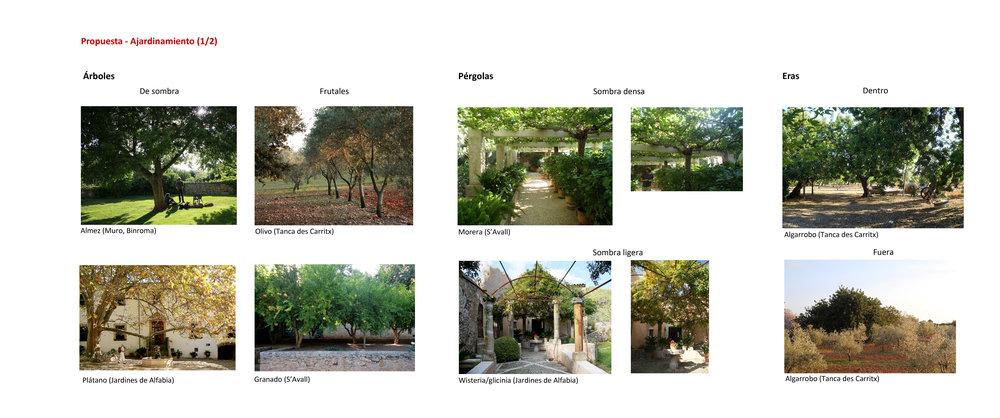 5_Casa-Tanca-Carritx-Jardin.jpg