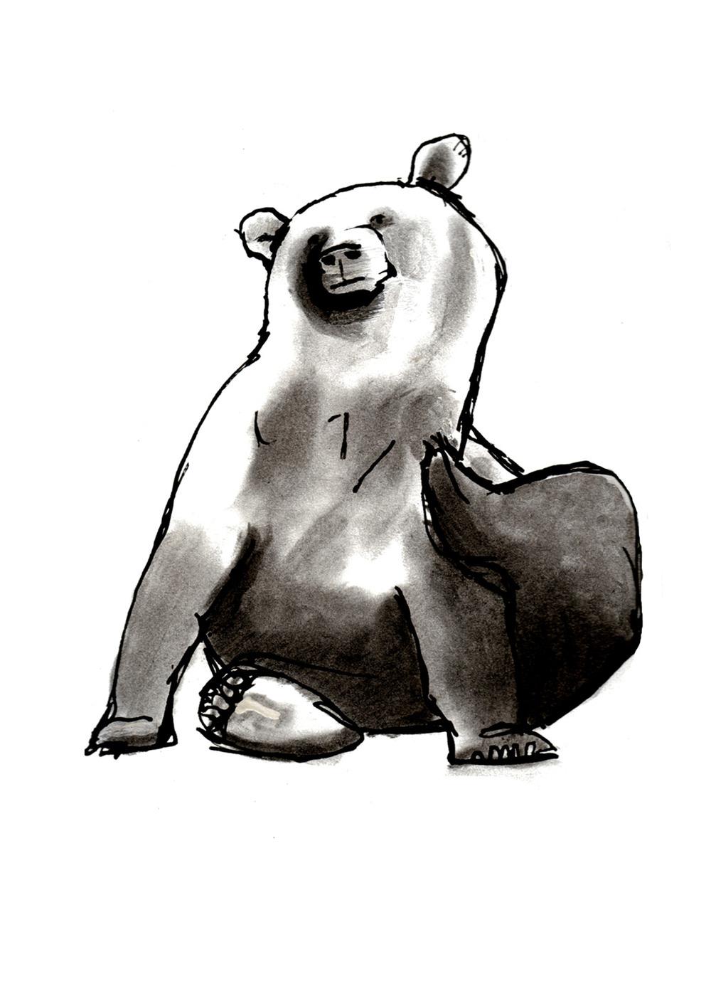 bearpoem.jpg