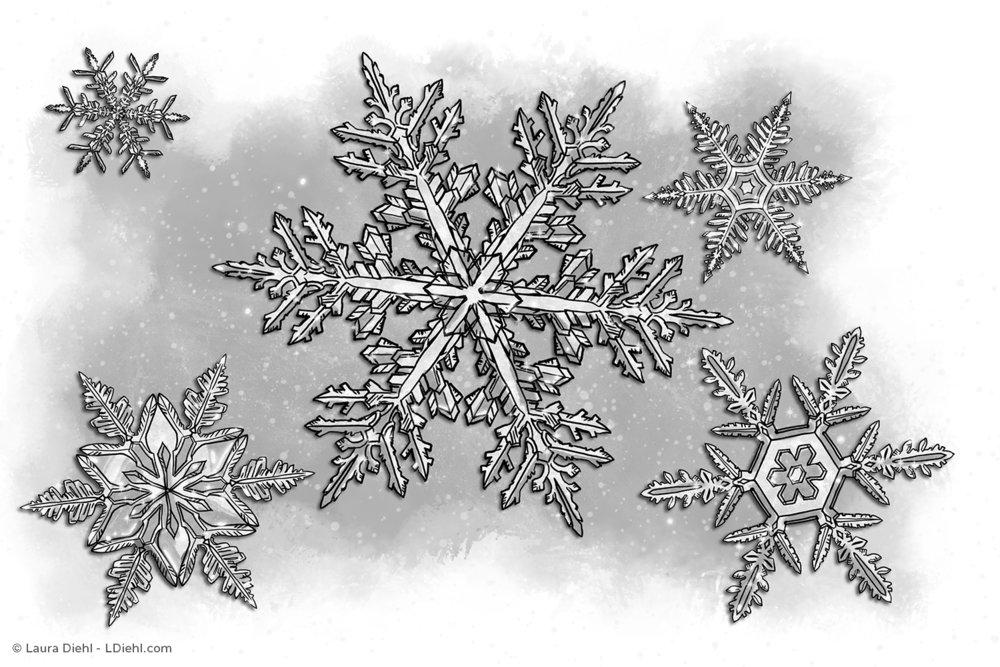 winterint_01b.jpg