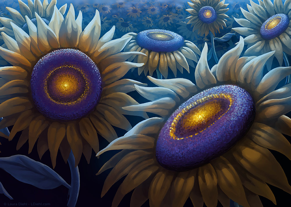 sunflowerwish_ldiehl-c3.jpg