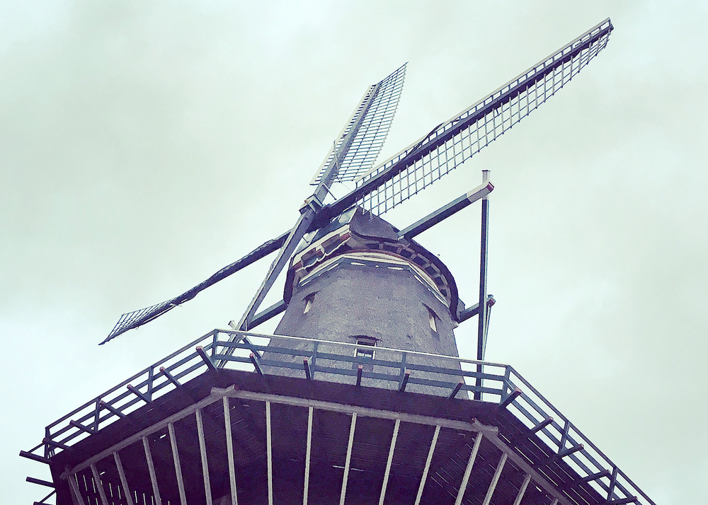 One of the many windmills throughout the city