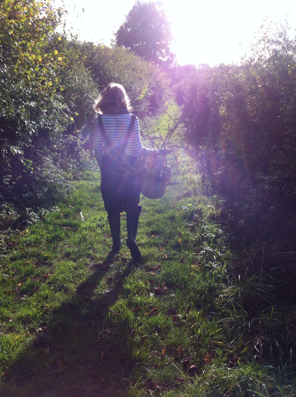 AESME Blog | foraging