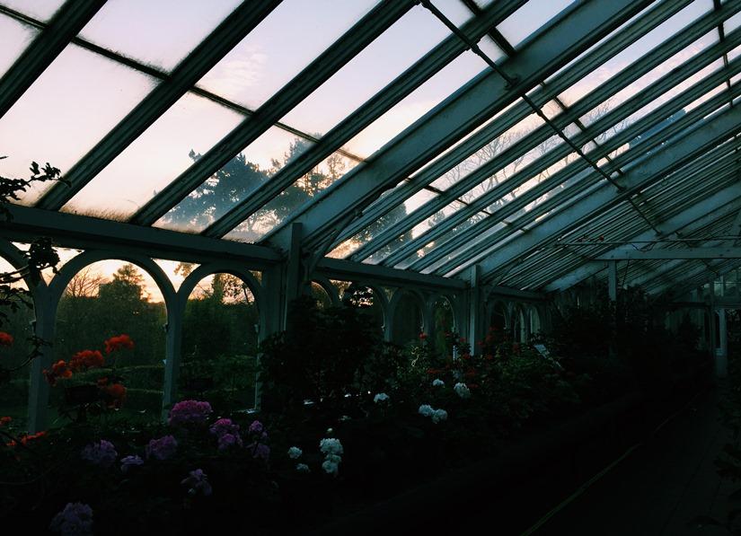 AESME Blog | birmingham botanic garden