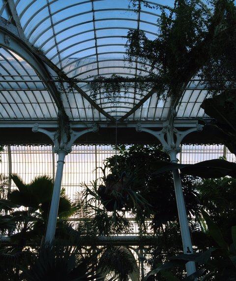 AESME Blog | kew gardens at dusk