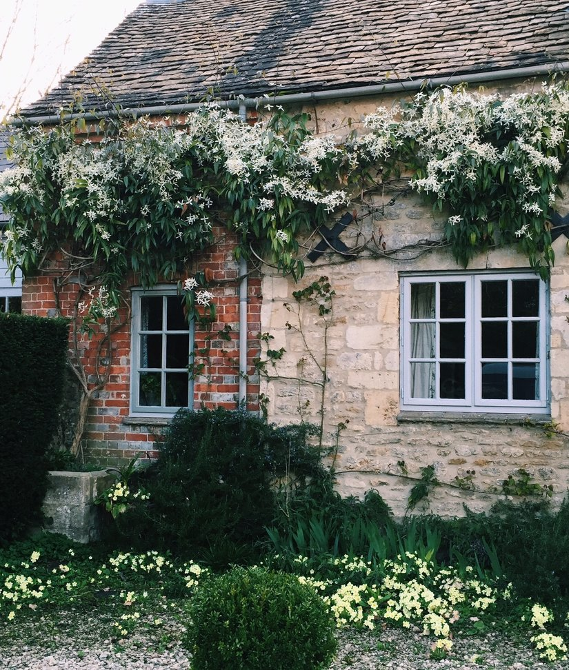AESME Blog | the cottage