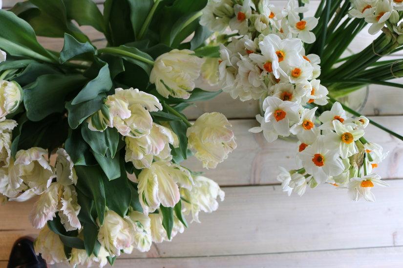 AESME Blog | spring blooms