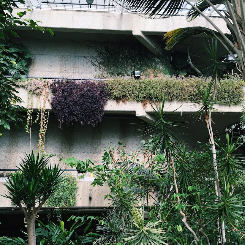 AESME Blog | the barbican conservatory