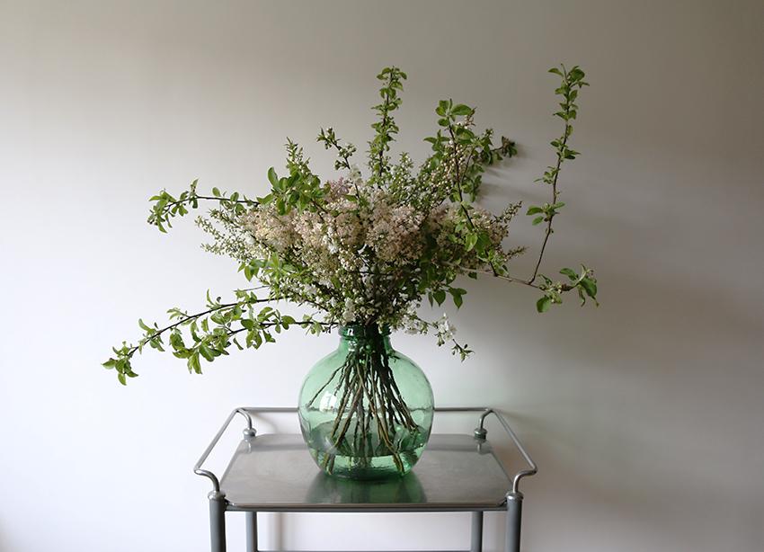 AESME Blog | May Blossom