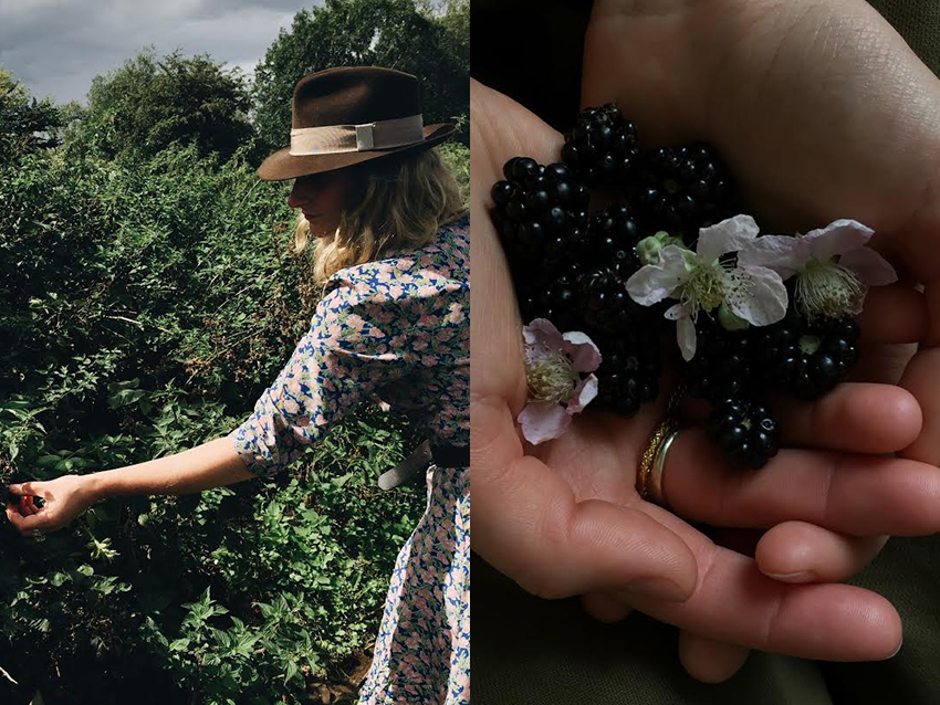 AESME blog | blackberry picking
