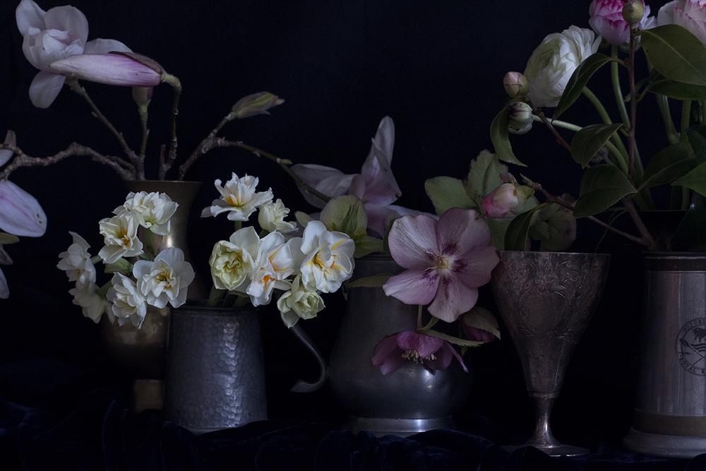 AESME blog | spring flowers series.jpg