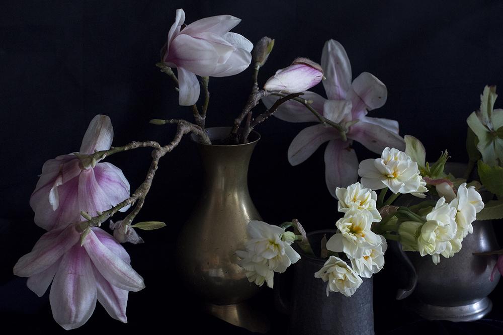 AESME blog   spring flowers series 2.jpg