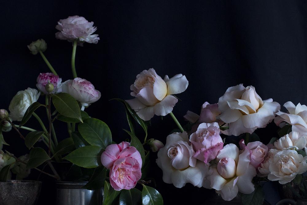 AESME blog | spring flowers series 3.jpg