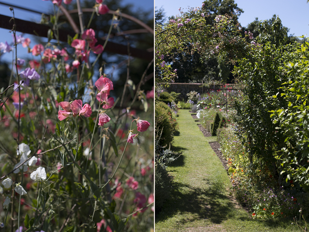 Helmingham Hall Gardens | Aesme Flowers