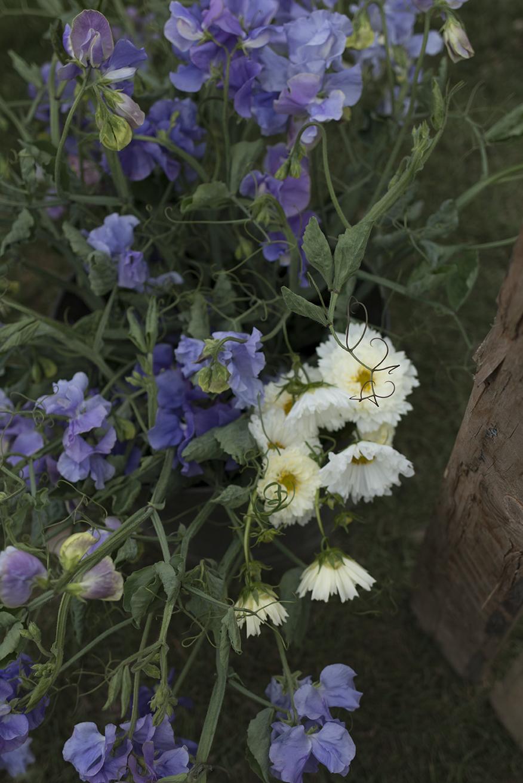 Autumnal flower styling | Aesme Flowers.jpg