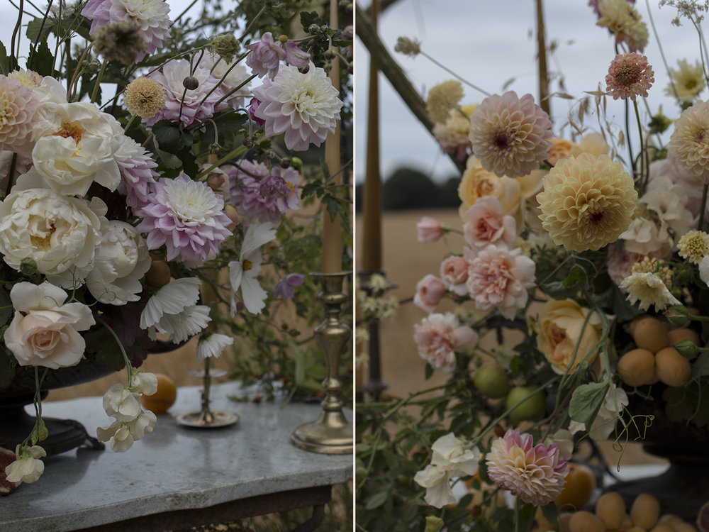 Dahlias and roses | Aesme Flowers