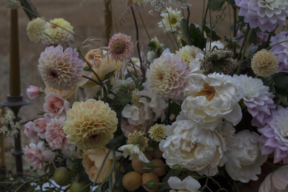 Early autumn flowers | Aesme Flowers