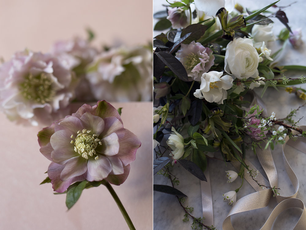 Spring hellebore bouquet | Aesme Flowers London