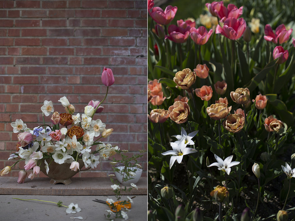 British spring flowers | Aesme Flowers London