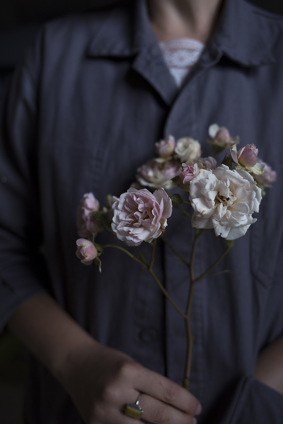 English Garden Roses Aesme Flowers London