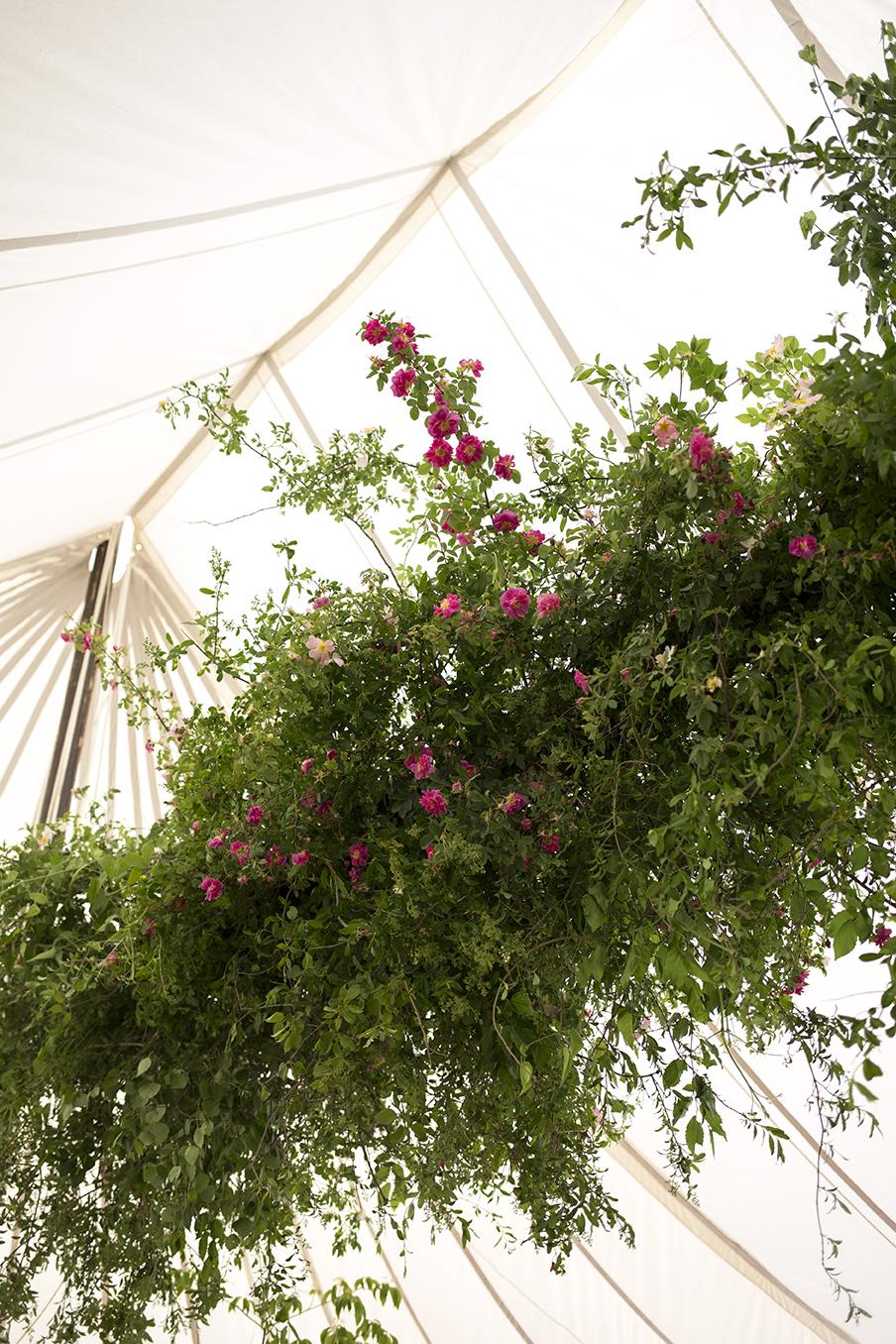 Aesme Flowers London | Flower Installation